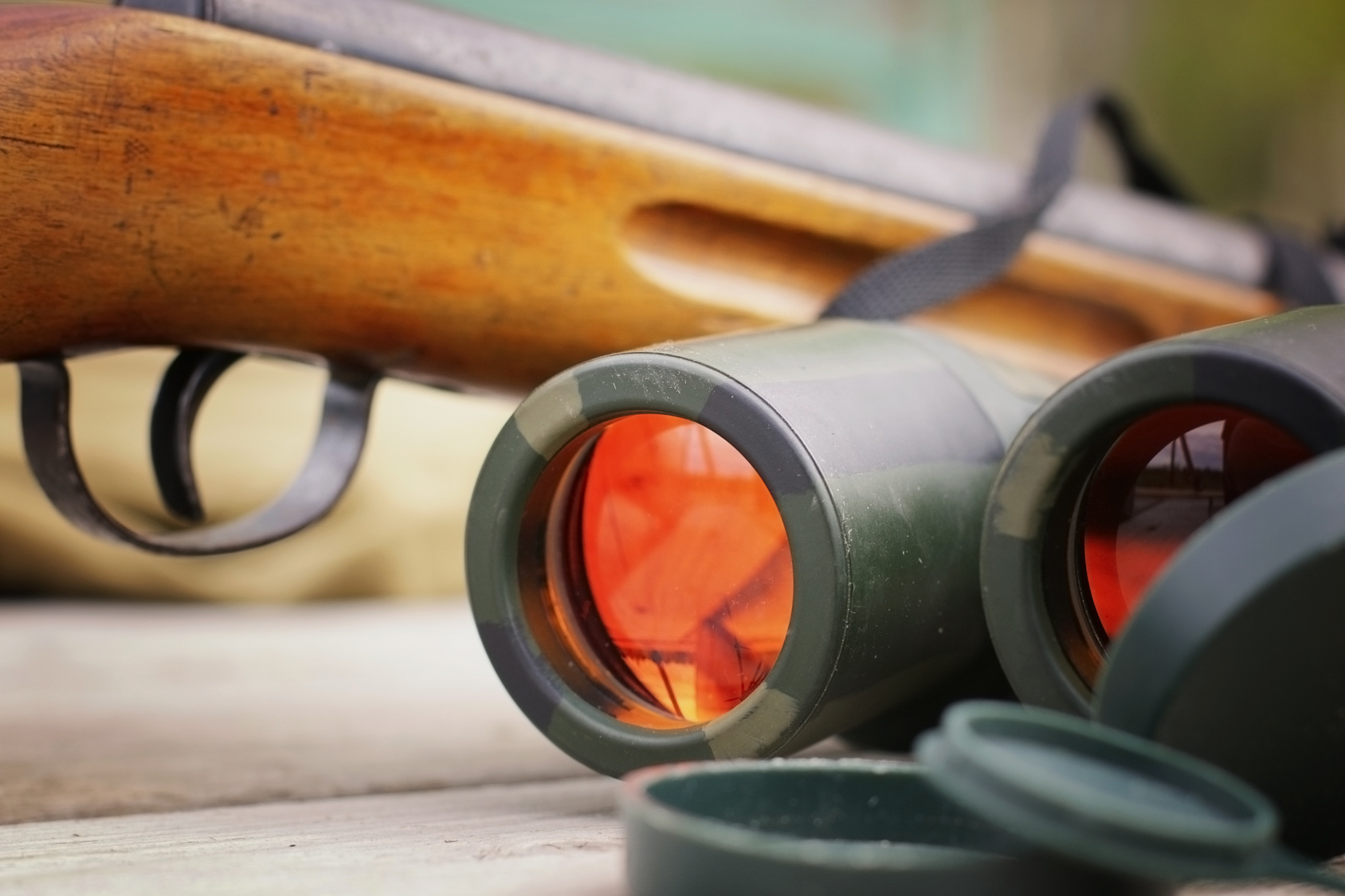 Best Compact Binoculars for Birding, Hunting and More