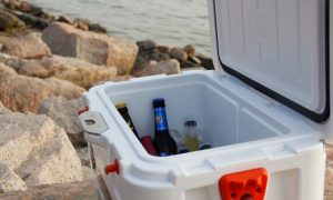 7 Best Wheeled Cooler: Reviews & Ratings