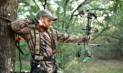 The 5 Best Bow Sight For Hunting: Improve Your Aim
