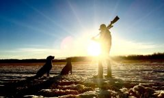 Top 5 Safety Precaution You Should Take While Hunting